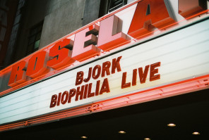 Bjork at the Roseland Ballroom by Chase Elliott Clark